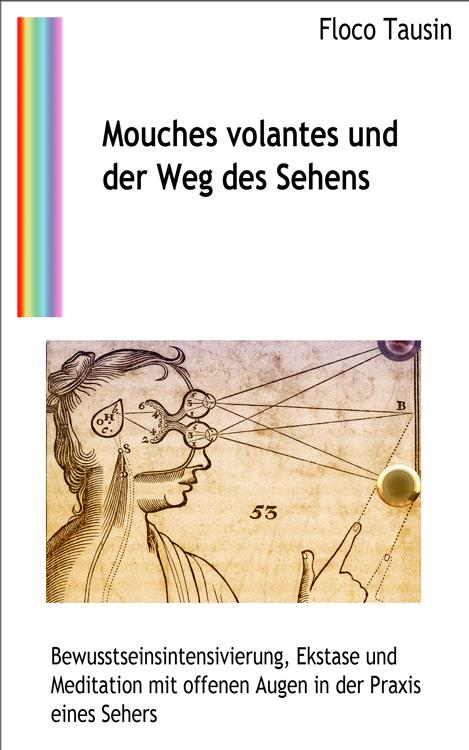 Das eBuch: Mouches volantes und der Weg des Sehens.