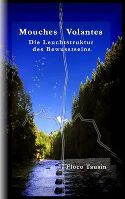 """Das Buch: """"Mouches Volantes - Die Leuchtstruktur des Bewusstseins""""."""