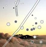 Dieses Mouches-volantes-Bild ist vom Leuchtstruktur Verlag gezeichnet.