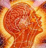 """David Luke: Die subjektiven geometrischen Formen sind nicht """"entoptisch"""" (= innerhalb des optischen Systems erzeugt),"""