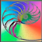 Mouches Volantes - Spirale