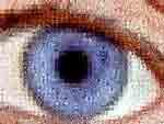 """Mouches Volantes (sogenannte Glaskoerpertruebungen) """"gesehen"""" von Zeitzeugen und interpretiert durch Floco Tausin."""