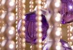 Mögen wir alle die kommenden Festtage und Übergangszeiten mit vielen Momenten des inneren Leuchtens erleben.